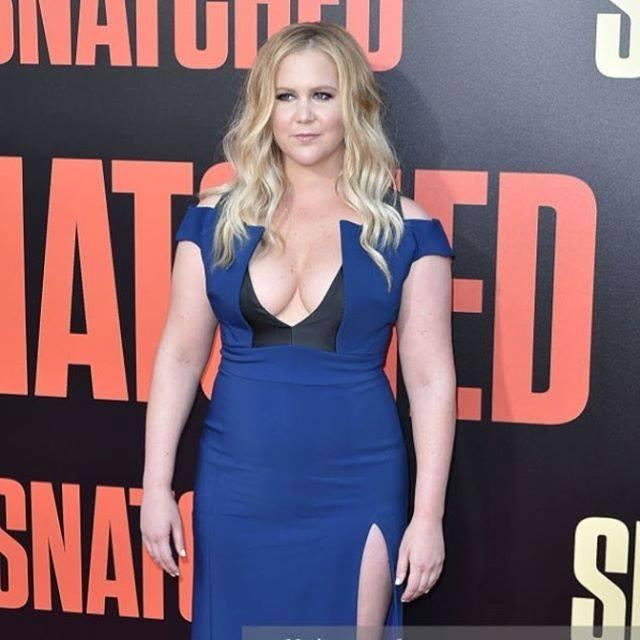 Amy Schumer Wiki, Age, Height, Weight, Husband, Sister