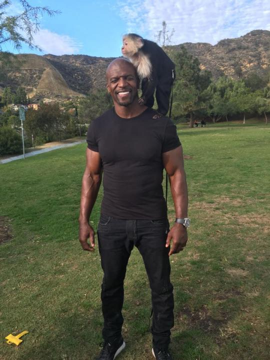 Terry Crews photos