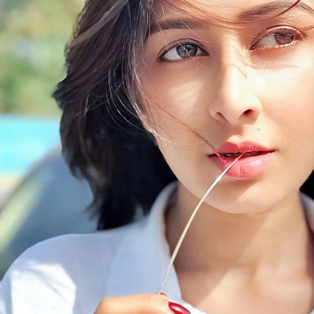 Farnaz Shetty Images